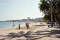 The beach of Maceio - Brazil