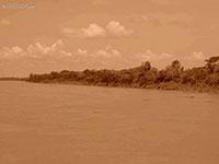 Amazon river  Peru